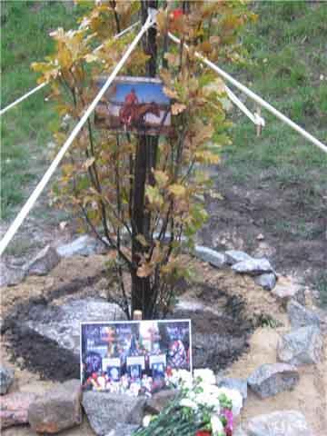 Дуб памяти Александра Дедюшко на Хортице